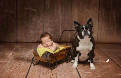Fotografiranje novorojenčka, dojenčka, otroka, družine in nosečnice